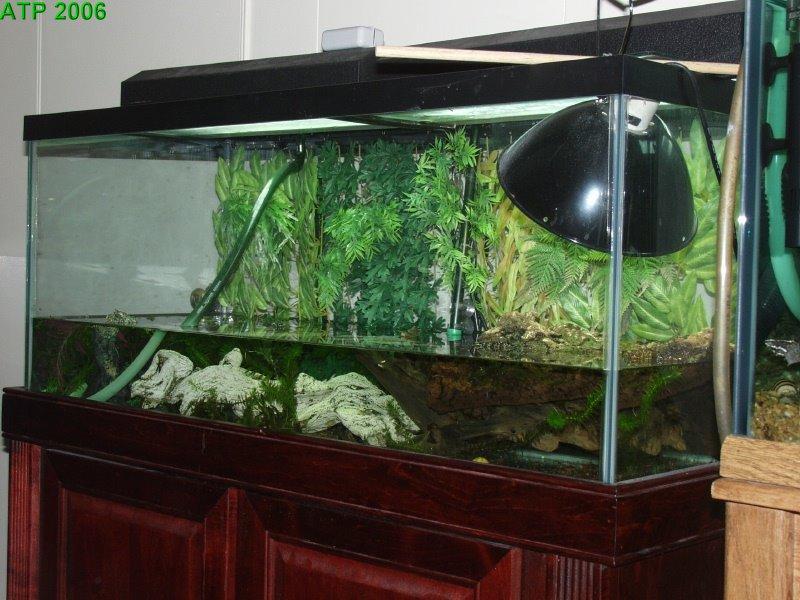 75 gallon aquarium for turtles zilla 90 gallon turtle for Fish tanks direct