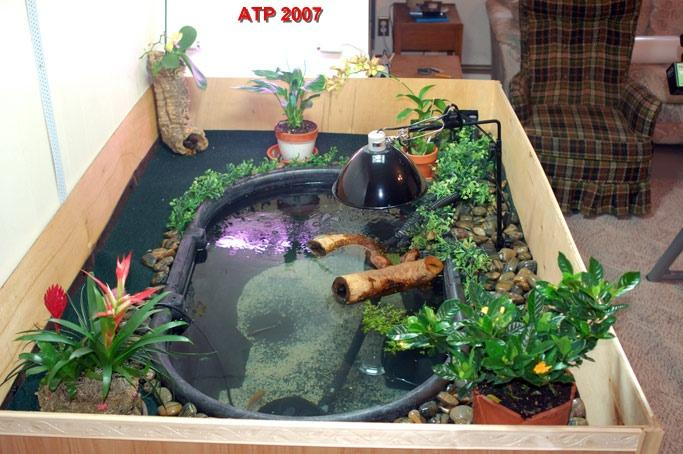 Photo gallery Diy indoor turtle pond